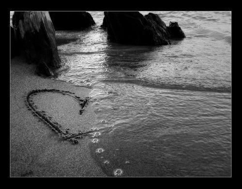 coração da eva